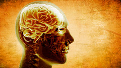 Clinicalneurologylogocropped