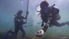 Ocean-solutions---ab6807
